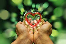 Experiencias multisensoriales, ¿cómo lograrlas?